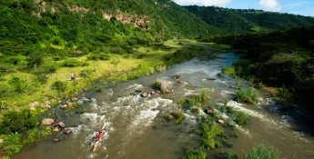 Paddlers in for a full-river treat on Sunday