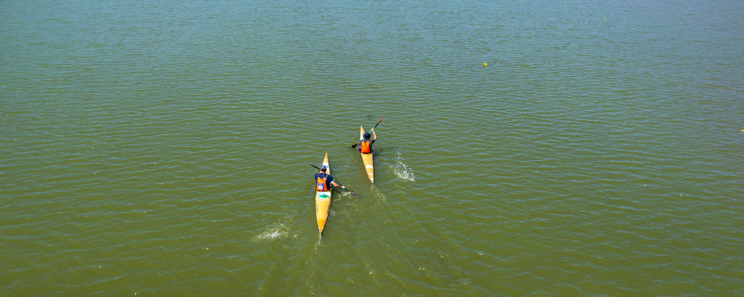 IMPORTANT POSITIVES FROM 2021 DUSI